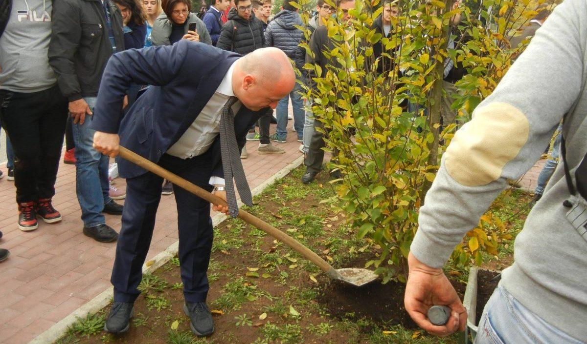 La guerra delle alleanze per le comunali di frosinone for Trento frosinone